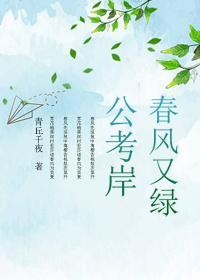 春风又绿公考岸最新章节